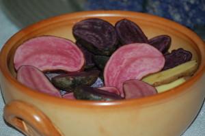 Kartoffelraritäten RoteEmma(rosa) BlaueElise RosaTannenzapfen(gelb) (6) web
