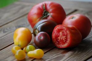 TomatenStilleben (17)