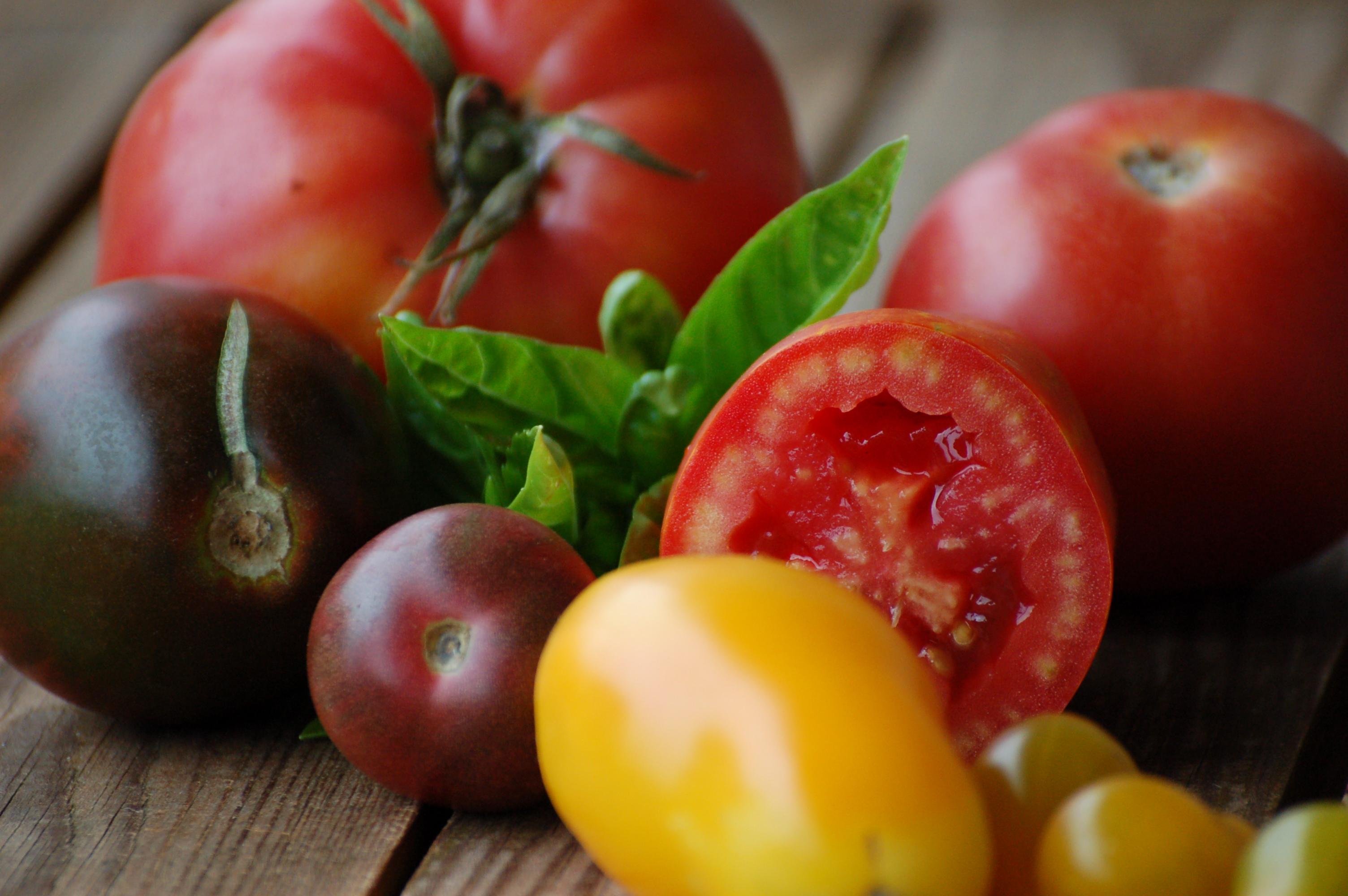 TomatenStilleben (8)
